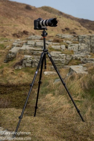 Review of the Vanguard Alta Pro 263AB 100 Ball Head Tripod